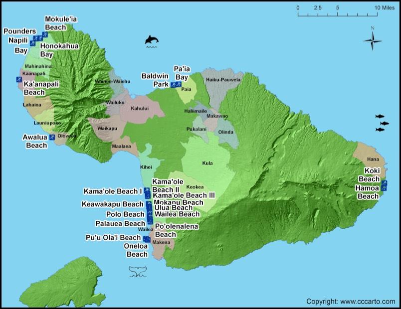 Maui surf beaches maui surf areas maui surfing beach map sciox Gallery