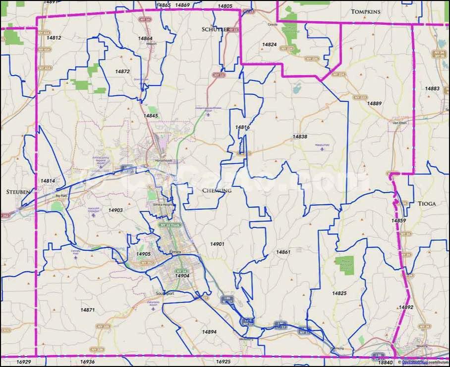 Elmira ny area code