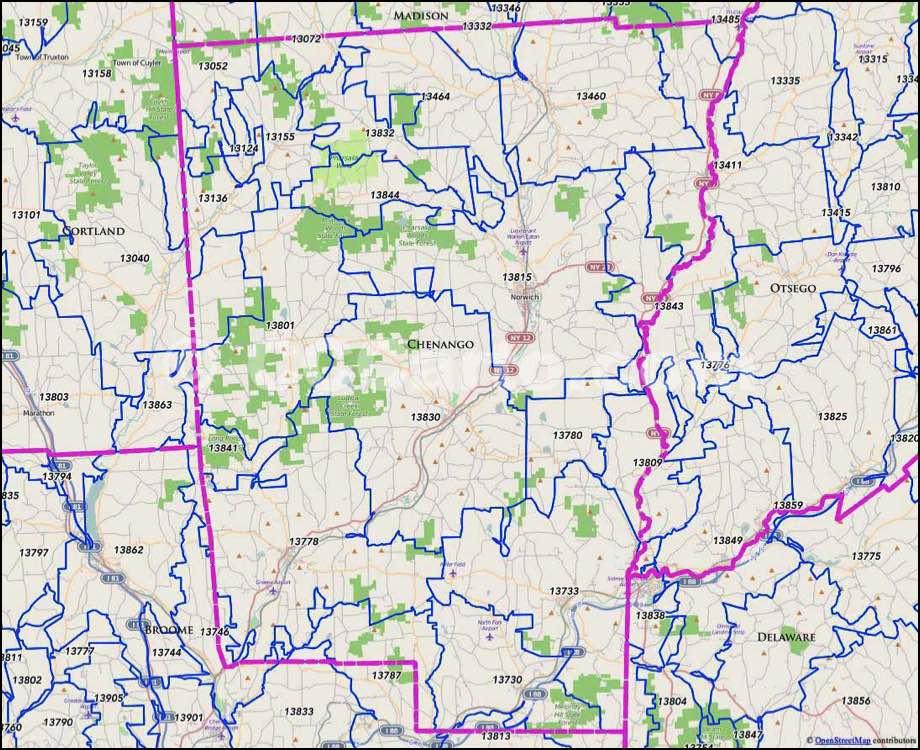 Livingston county ny zip codes